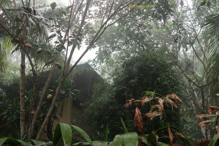 Auch hier kann's regnen