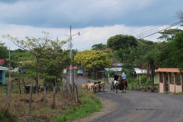 Mitten in einem Dorf