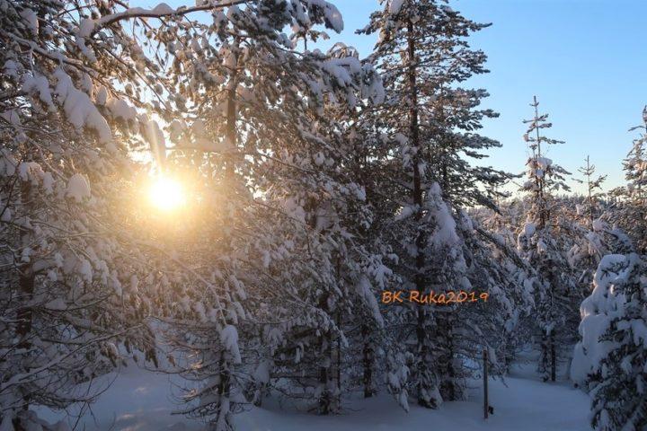 ruka tannen voll schnee