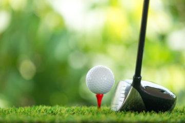 golf sport grün ball tee
